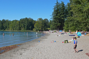 elk lake beach