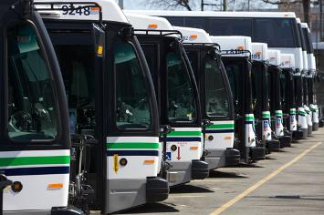 busses in Victoria
