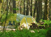 camp at McDonald Prov Park