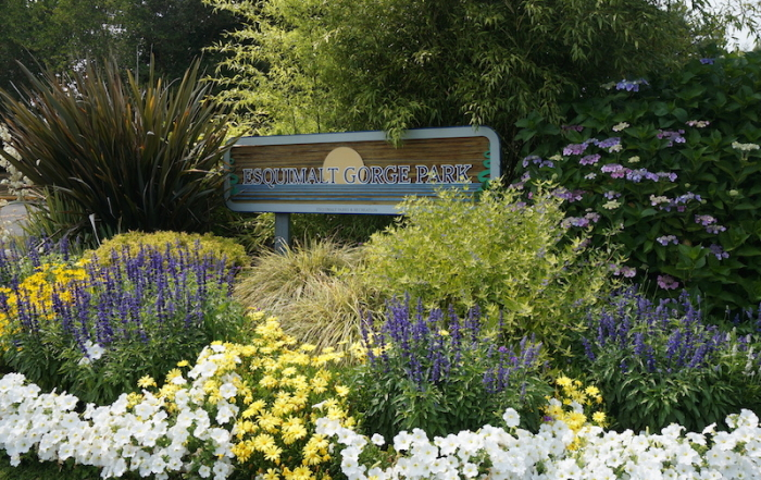 esquimalt gorge park sign, Victoria, BC, YYJ, Vancouver Island, Visitor in Victoria
