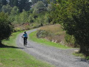 Colquitz Trail