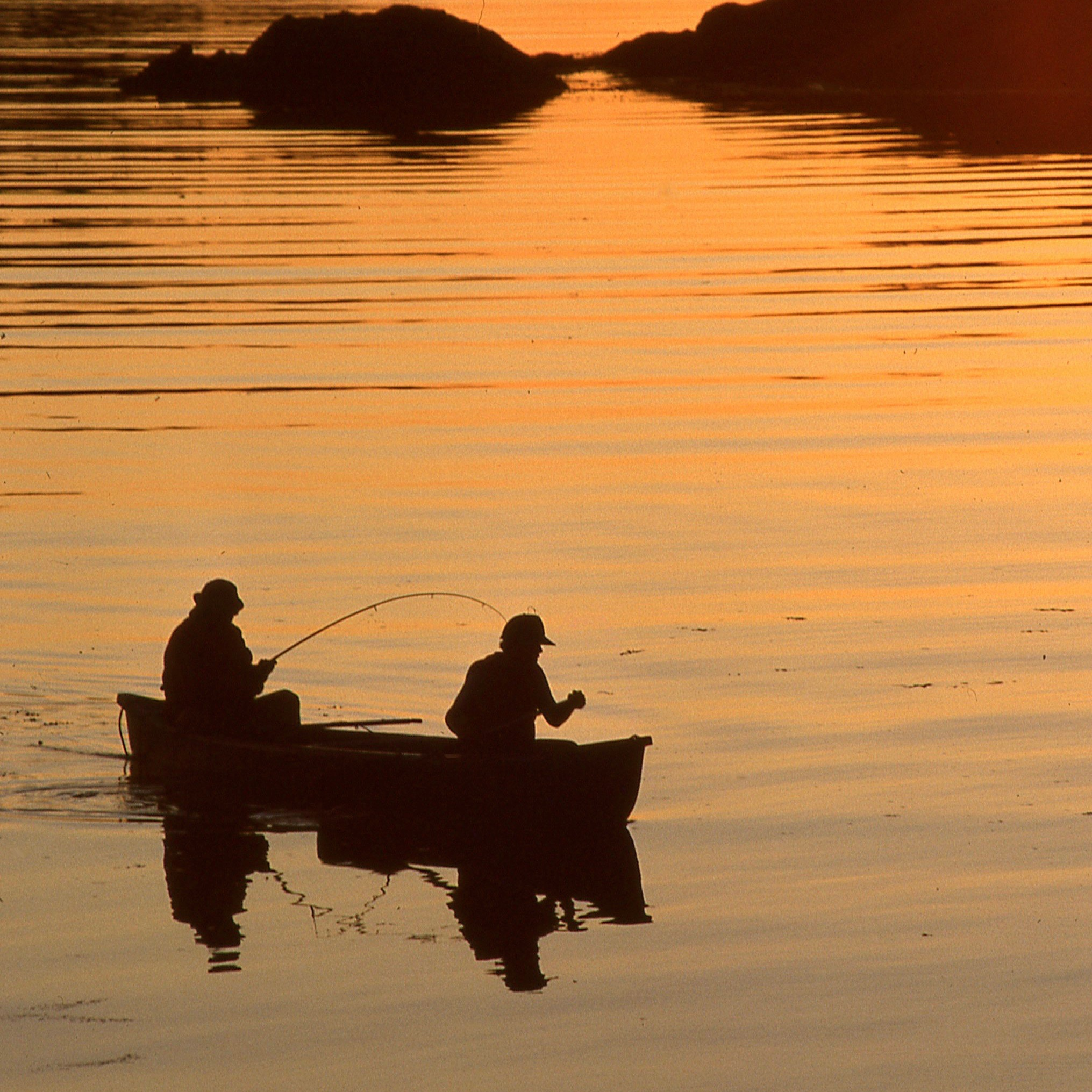 Fishing in Victoria, BC | Visitor In Victoria