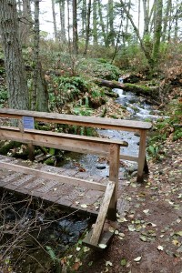Bridge across Sherwood Creek in Devonian Park, Victoria, BC Visitor in Victoria