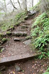 Rocky path at Devonian Park, Victoria BC Visitor in Victoria