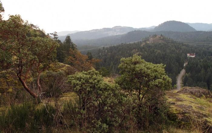 Lone Tree Hill Regional Park, Victoria, BC