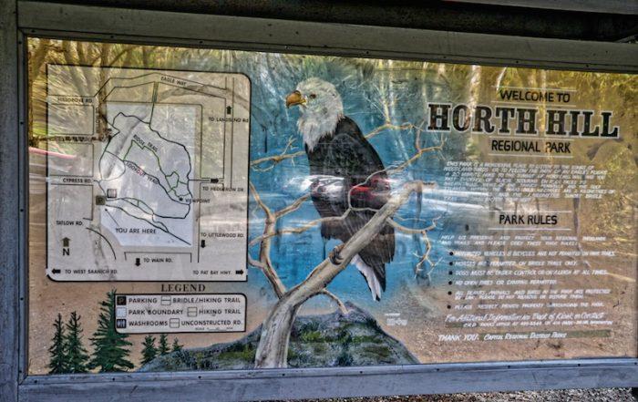 Horth Hill Park, Victoria, BC, Visitor in Victoria