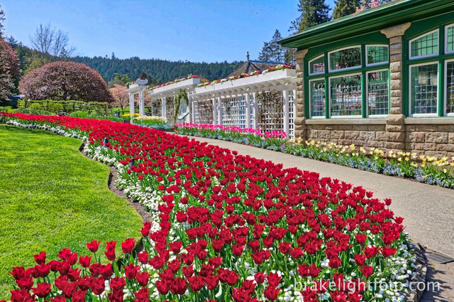 5 best gardens in victoria bc visitor in victoria - Best time to visit butchart gardens ...