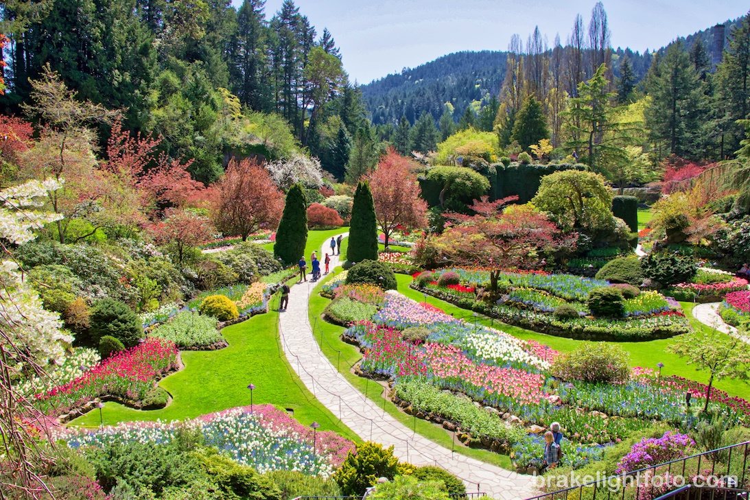 Butchart gardens visitor in victoria - Best time to visit butchart gardens ...