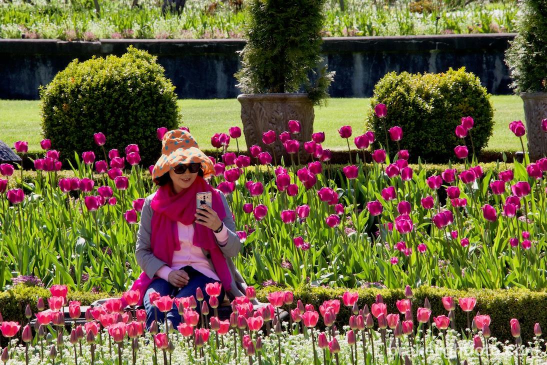 Buchart Gardens, Victoria, BC