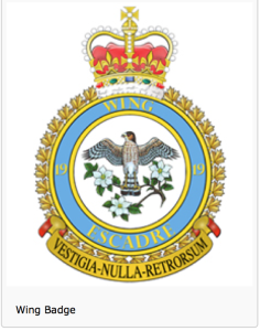 19 wing badge