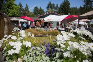 Horticulture festival