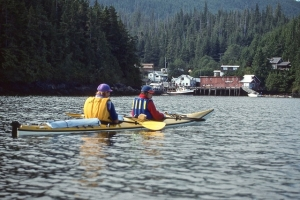 kayaks in Telegraph Cove