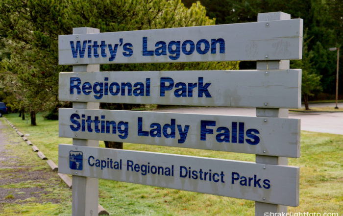 Witty's Lagoon Sign