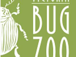 Bug zoo logo
