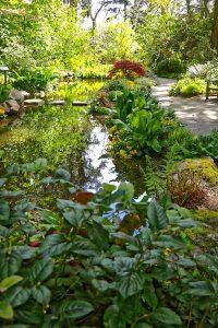 Finnerty Garden Pond, Finnerty Gardens University of Victoria, BC Visitori in Victoria