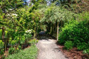 Finnerty Garden Pergola, University of Victoria, Finnerty Gardens, Visitor in Victoria