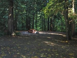 Goldstream campground