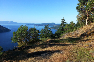 gowland tod trail