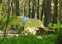 camp at McDonald Prov Park
