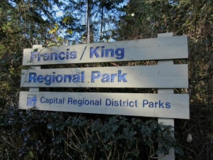 francis king regional