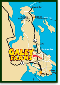 Galey Farms Map