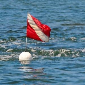 Dive Charters Victoria