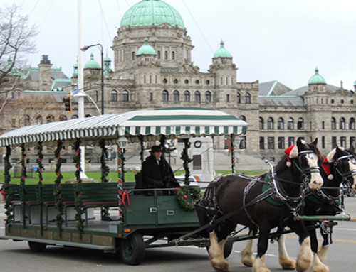 CHRISTMAS ACTIVITIES IN DOWNTOWN VICTORIA