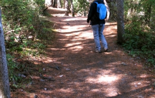 Hiking in Victoria