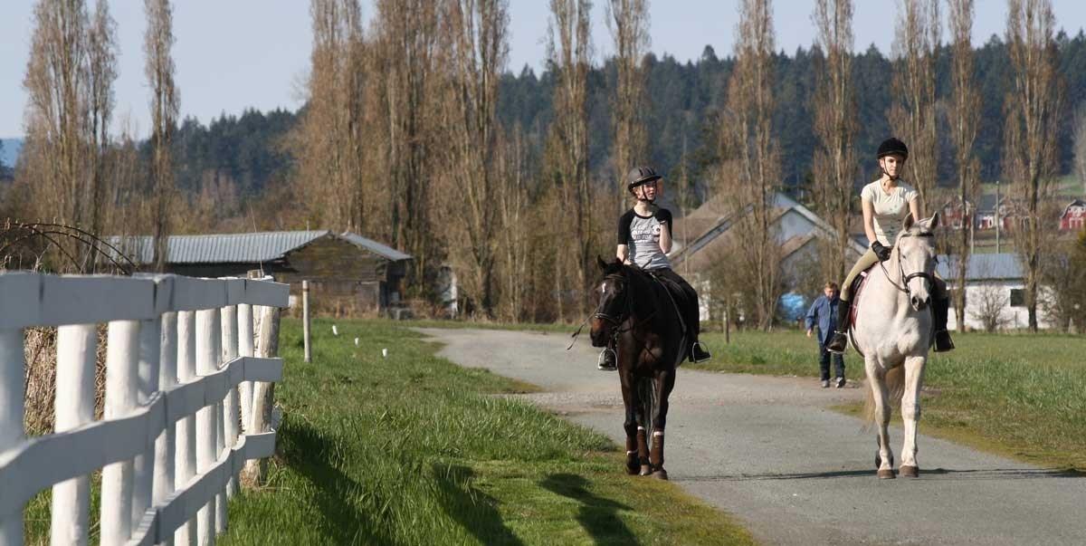 Trail Rides Stables In Victoria Visitor In Victoria