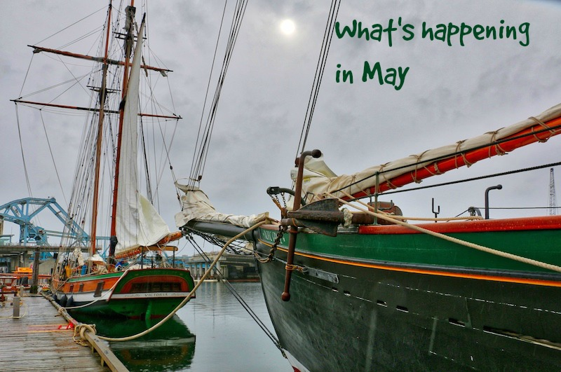 What's Happening in May, Visitor in Victoria, Victoria BC