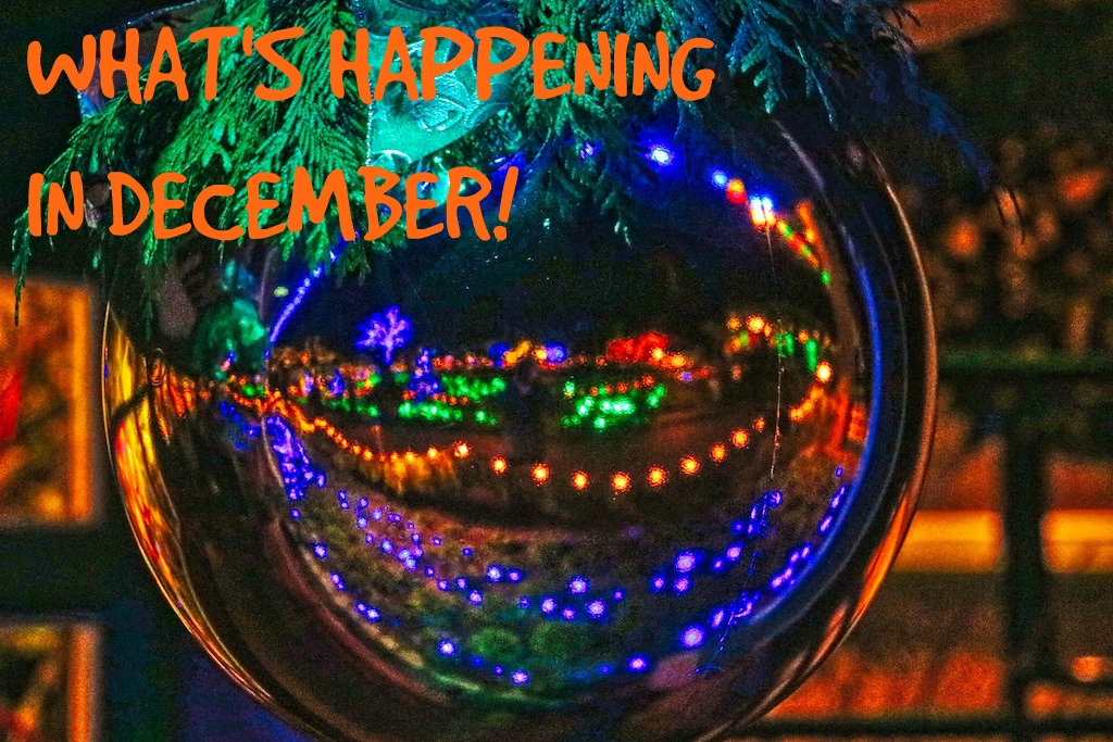 What's happening in December, Visitor in Victoria