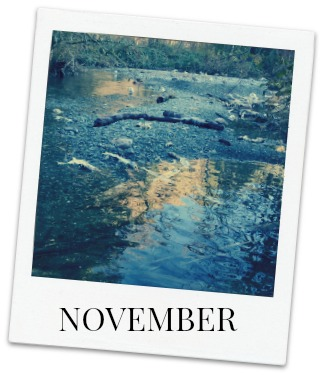 Festivals & special events in Victoria, BC in November