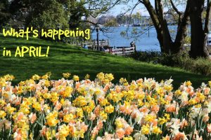 What's happening in April, Visitor in Victoria, Victoria, BC