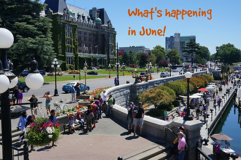 What's happening in June in Victoria, BC Visitor in Victoria