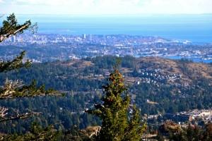 View from Mt. Finlayson, Victoria, BC Visitor in Victoria