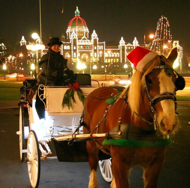 Horse Drawn Trolley At Christmas In Victoria Bc Visitor