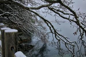 Westsong walkway in the snow