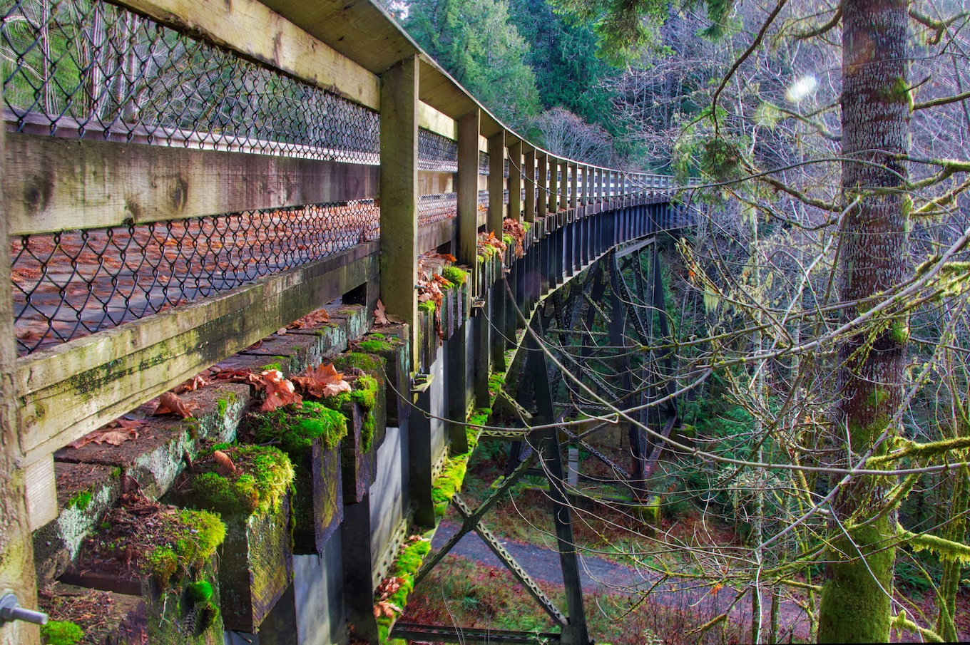 Charter's Creek Trestle Sooke, BC