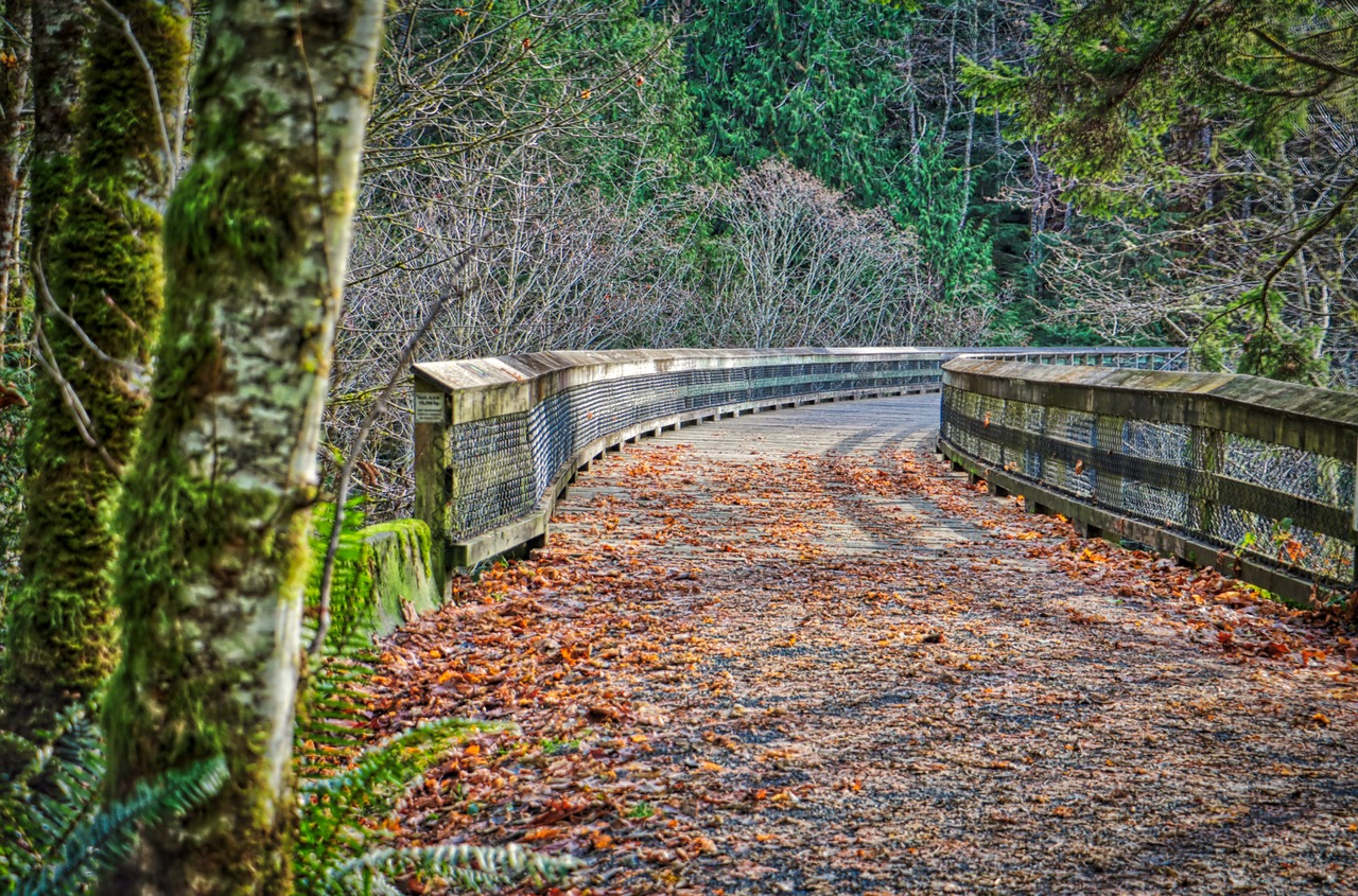 Charter's Creek Trestle, Sooke, BC