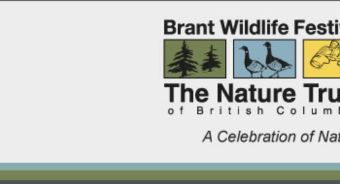 Brant Festival
