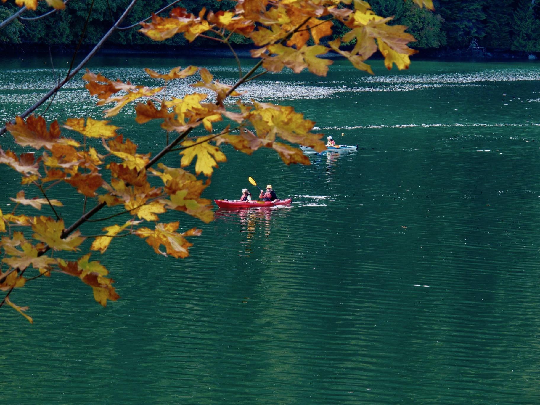 Tod Inlet Kayaking