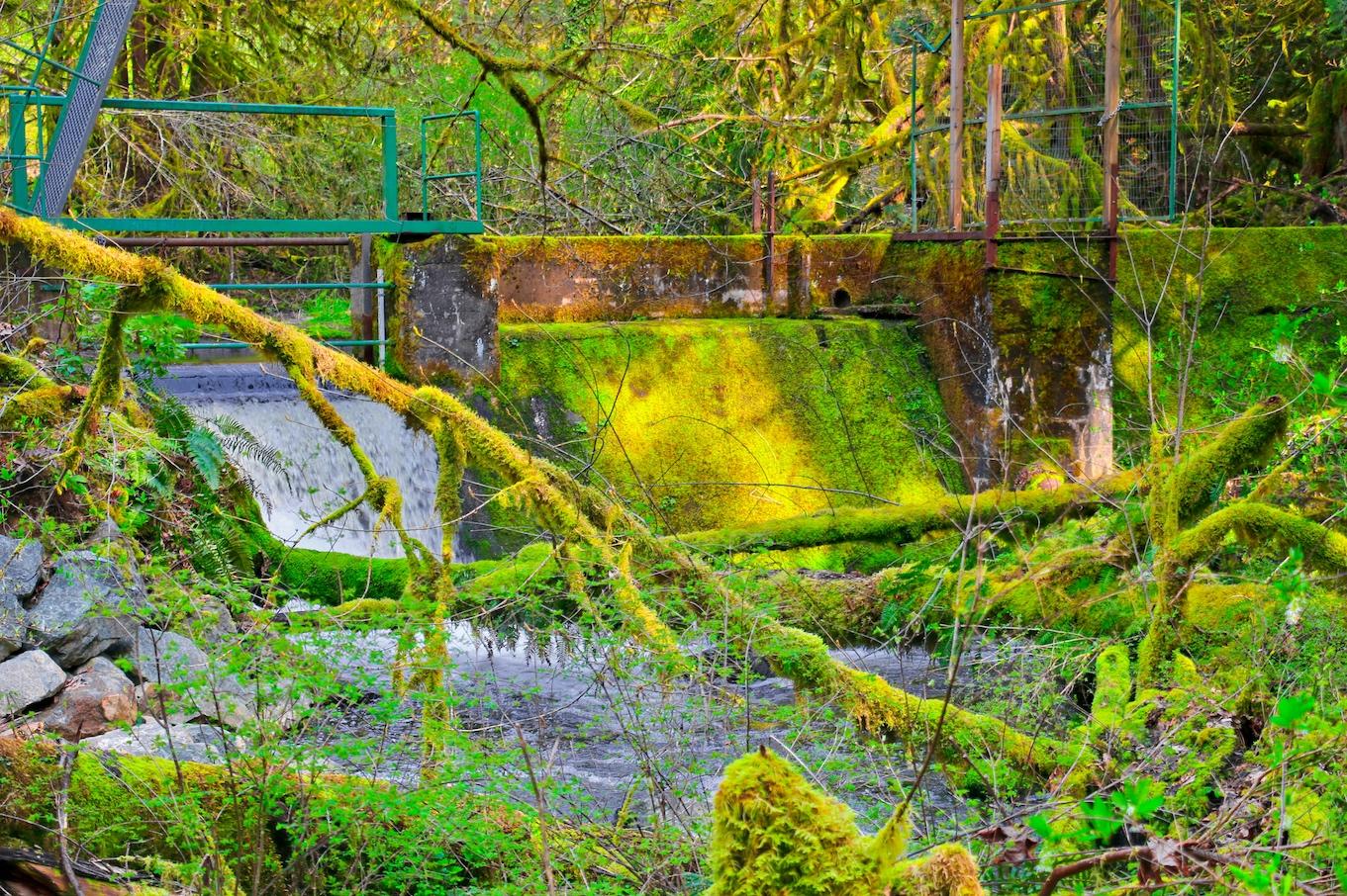 Tod Creek Dam