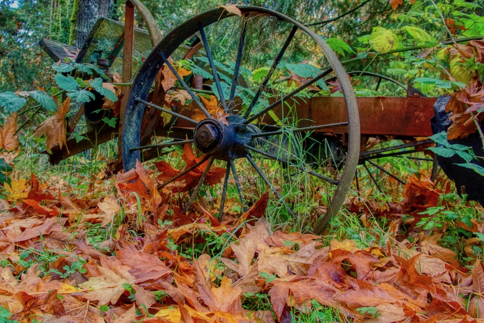 Abandoned farm implement in the fall