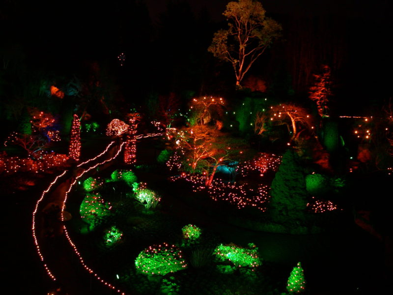 Butchart Gardens Christmas Lights, Visitor in Victoria