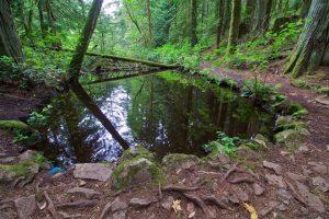 Emerald Pool, John Dean Provincial Park