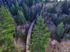 Charter's Creek Trestle, Sooke, BC