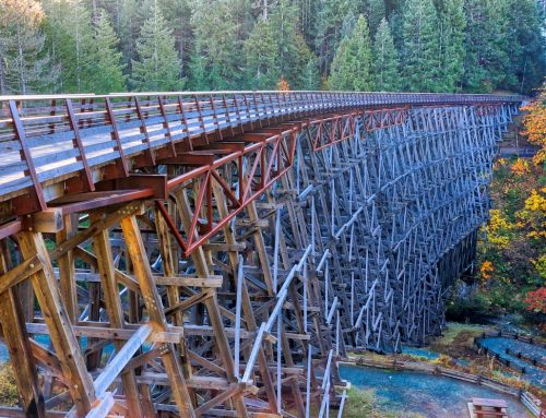 HISTORIC KINSOL TRESTLE