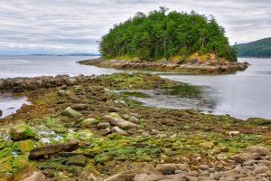 Campbell Pt, Mayne Island