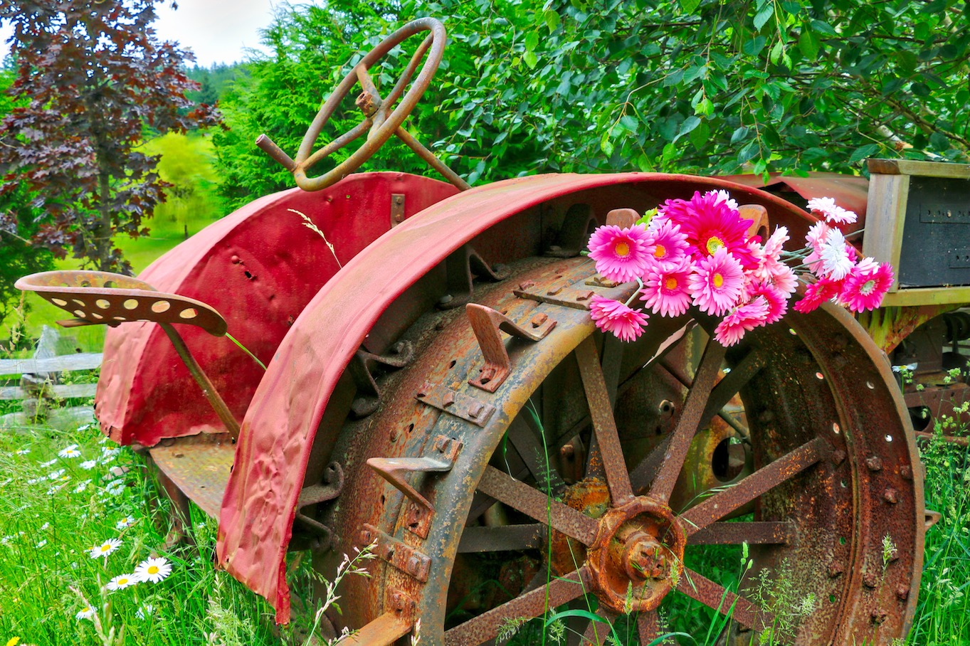 Old Tractor on Mayne Island