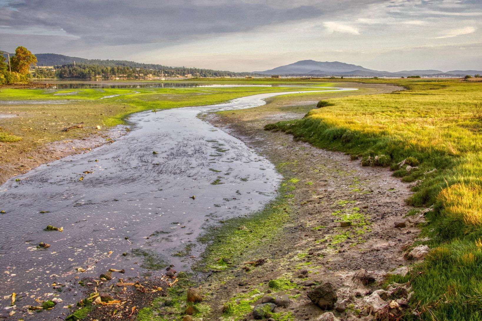 The lagoon at Cordova Spit